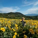 Queneau_wildflowers-8994